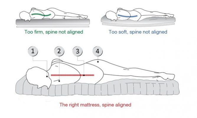 spinal alignment