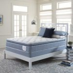 Sleep and health Foam mattress Reviews